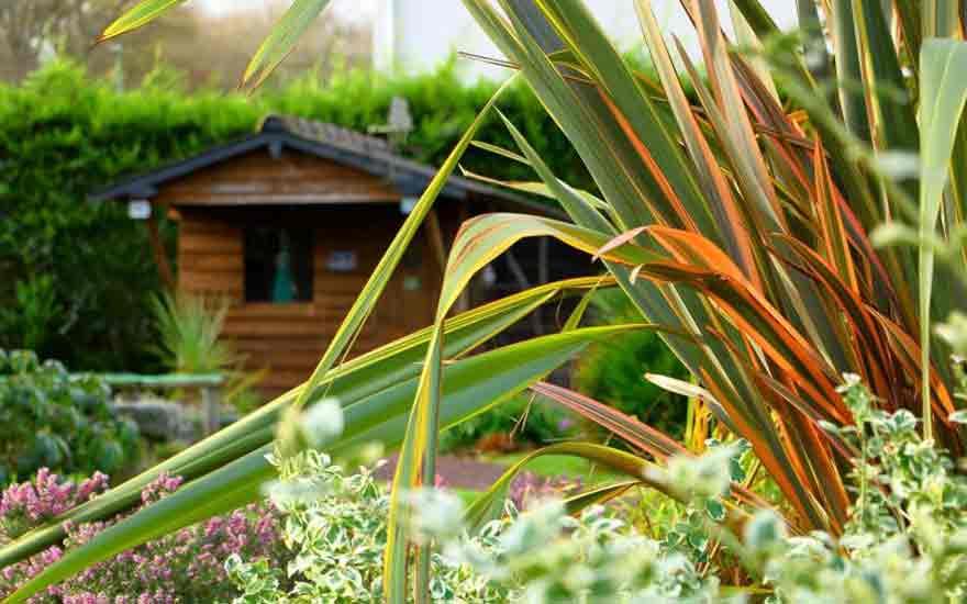construire un abri de jardin nos conseils decodambiance. Black Bedroom Furniture Sets. Home Design Ideas