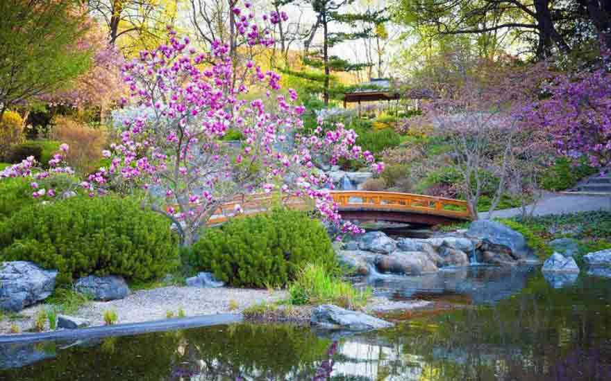 Emejing photos jardin japonais photos for Rocher jardin japonais