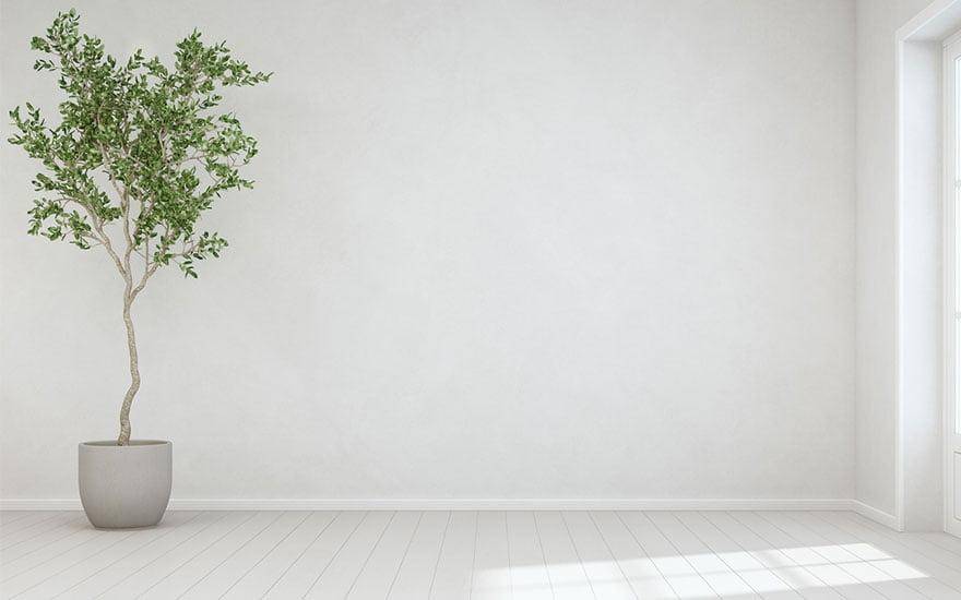 arbre d'intérieur