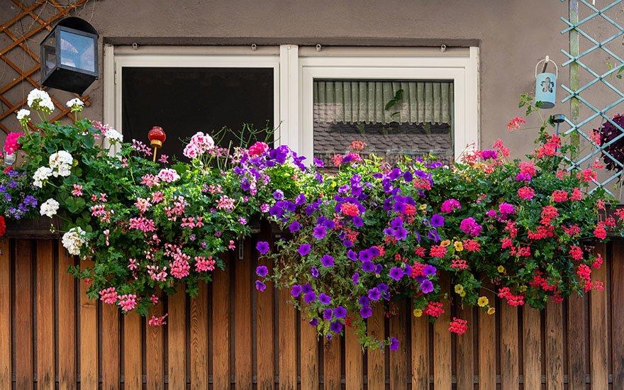 astuces brise vue balcon