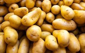 techniques pour conserver les pommes de terre