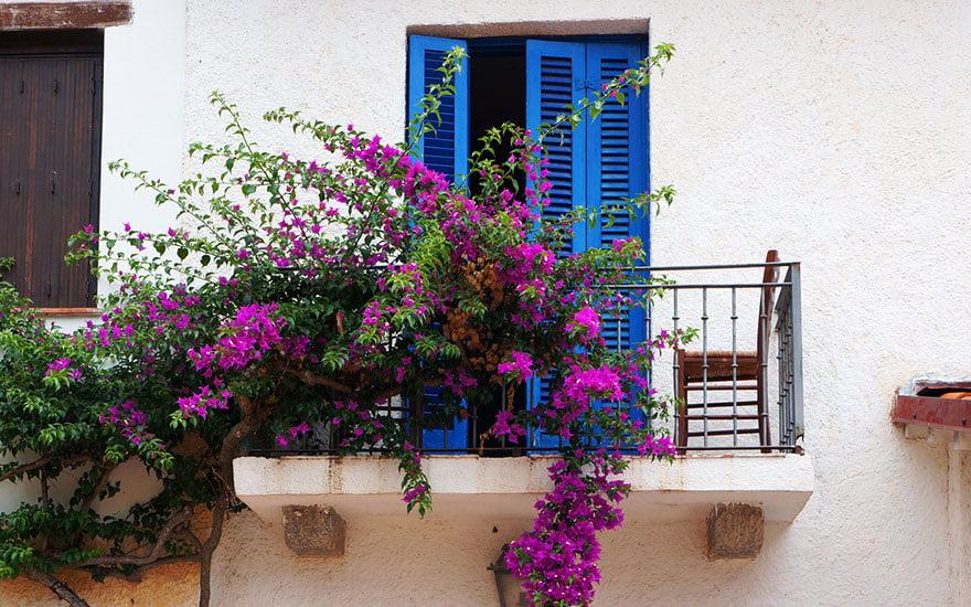couleurs volet maison blanche