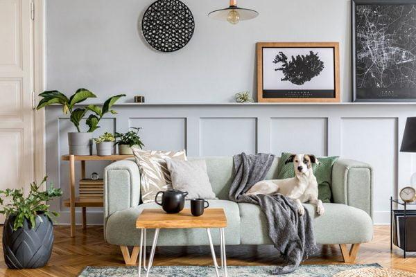 décorer appartement locataire